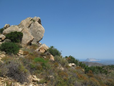 Rocks, macchia, Tavolara Island, ...