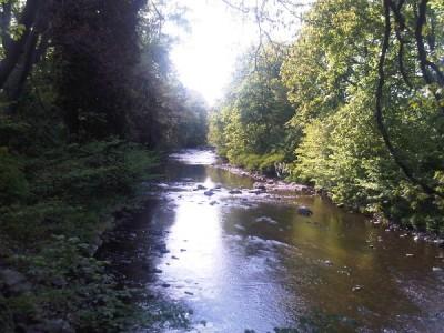 River Brigach